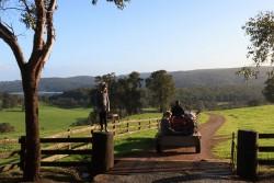 Harvey-Hill-Farm-Stay-WA-25